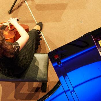 Konzert, Allegro Vivo Festival